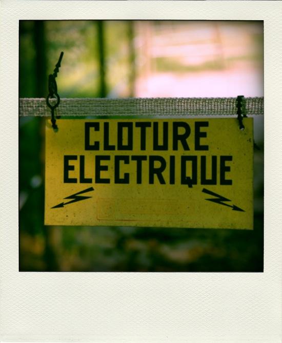 cloture électrique