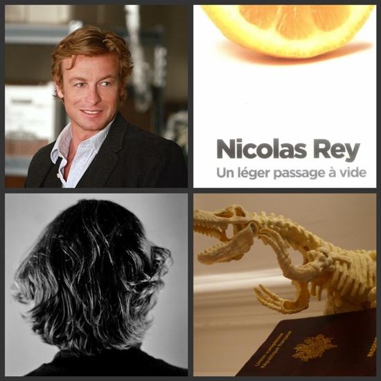 Nicolas Rey passage à vide