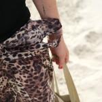 Graou à la plage (aou cha-cha-cha)