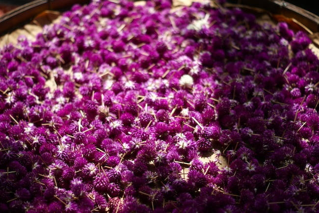 marche aux fleurs bangkok 8