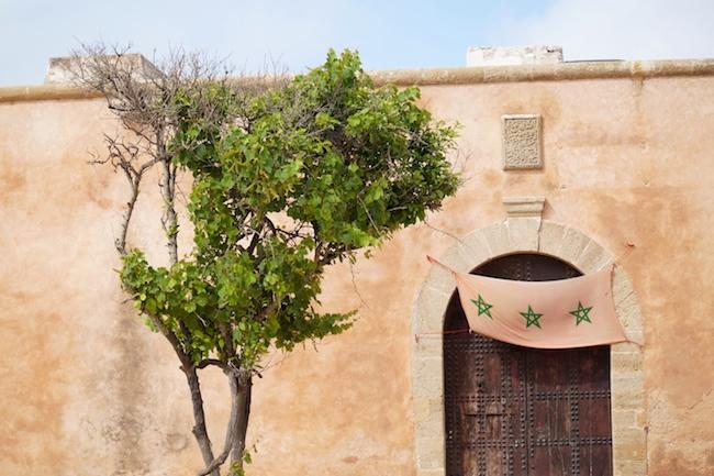 Rabat 37