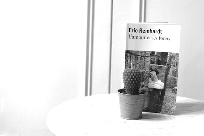 l amour et les forets eric reinhardt