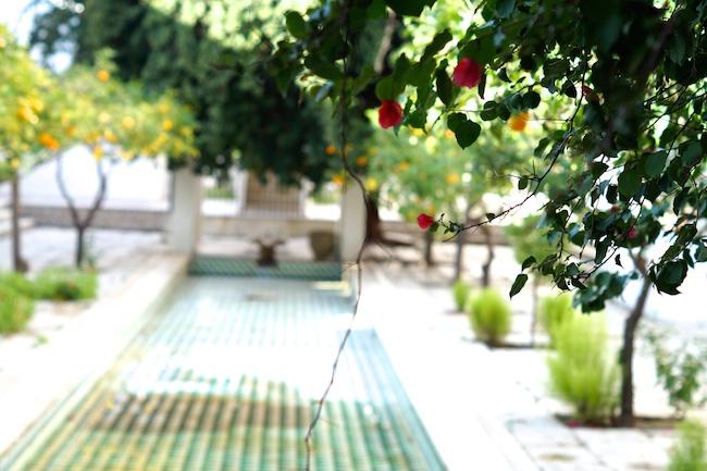 seabel-alhambra-port-el-kantaoui-7