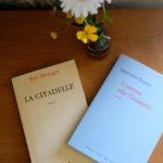 Deux romans sinon rien