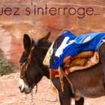 Rodriguez et «la ceinture de bombe»