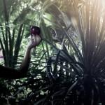 Jungle (ego) trip
