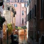 Voir Venise